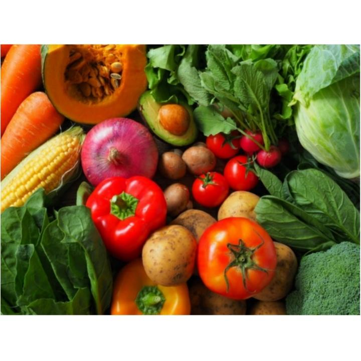 野菜情報!ダイエットに効果的な野菜って?&野菜の見分け方 【#モアチャレ 農業女子】_2