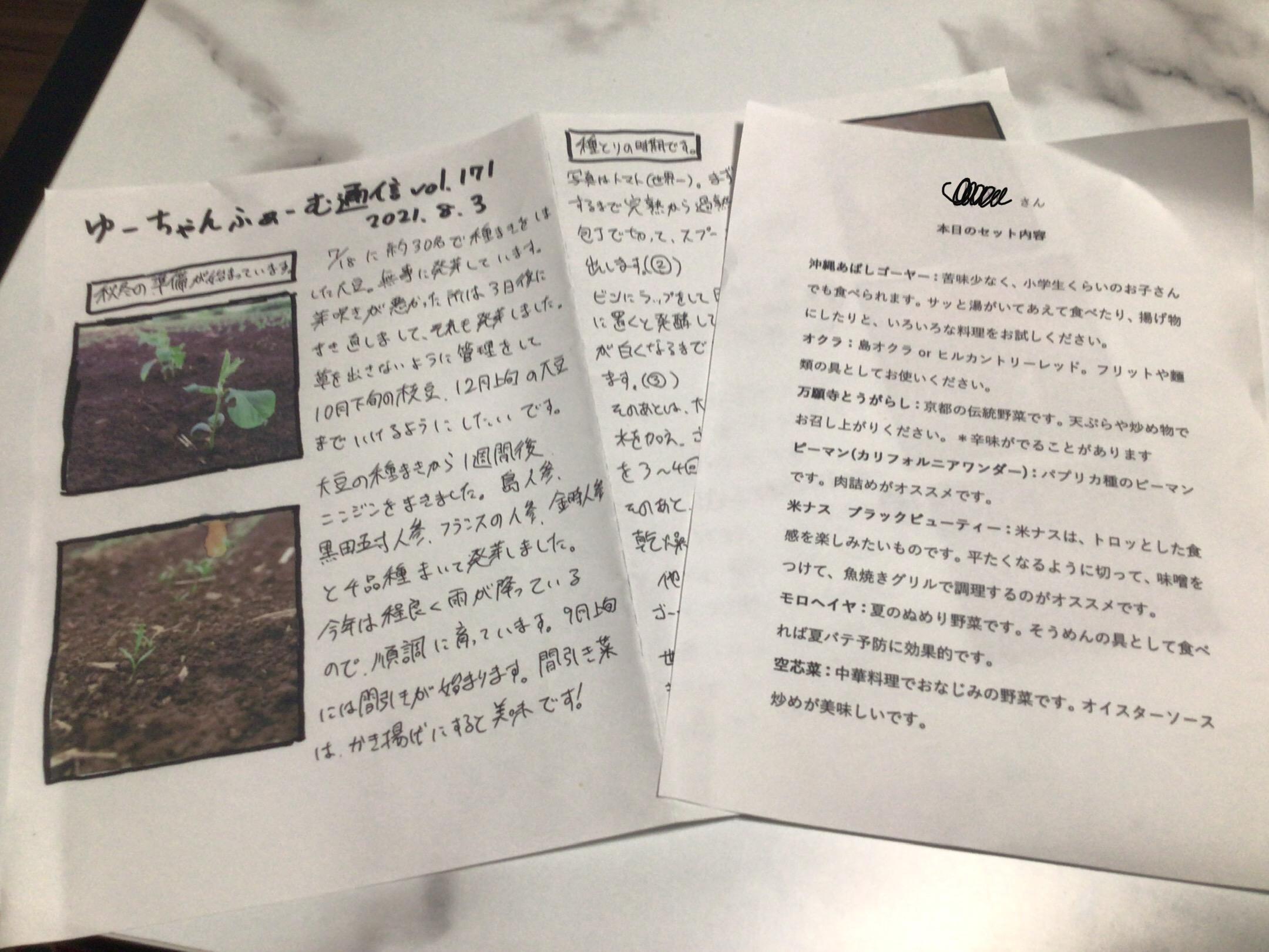 【SDGs×超簡単お料理アイデア】産地直送農産物を楽しめる食べチョクお野菜で☆_5