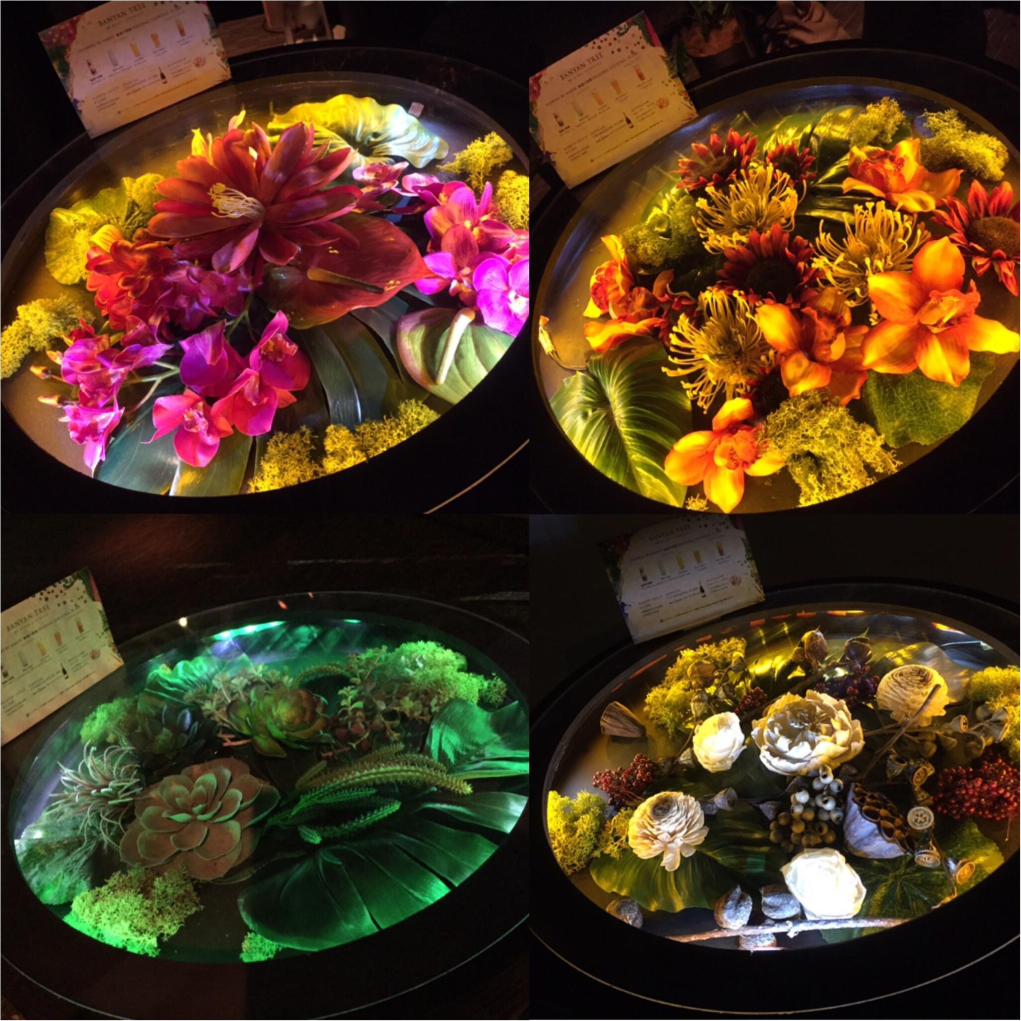 【8/31まで】五感で楽しむ花の楽園《*FLOWERS BY NAKED*》に行ってきました♪♪他にもNAKEDに出会える場所を紹介☆_13