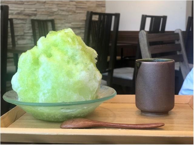 東京のおすすめかき氷特集 - 20代女子に人気のかわいくて美味しいかき氷店10選_28