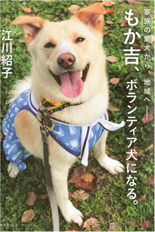 今月のオススメ★BOOK 『坂の途中の家』『もか吉、ボランティア犬になる。』_2