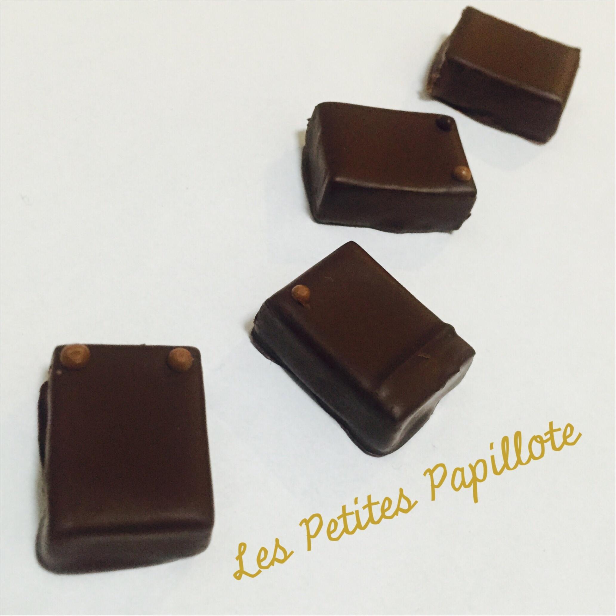 レ・プティット・パピヨット (Les Petites Papillotes)♡おしゃれな靱公園で一際輝くチョコレート専門店!_4