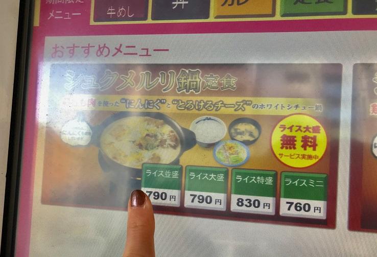 『松屋』の話題メニュー「シュクメルリ」を実食! 初めてのジョージア料理がおいしすぎて、シェアせずにはいられない件 PhotoGallery_1_2