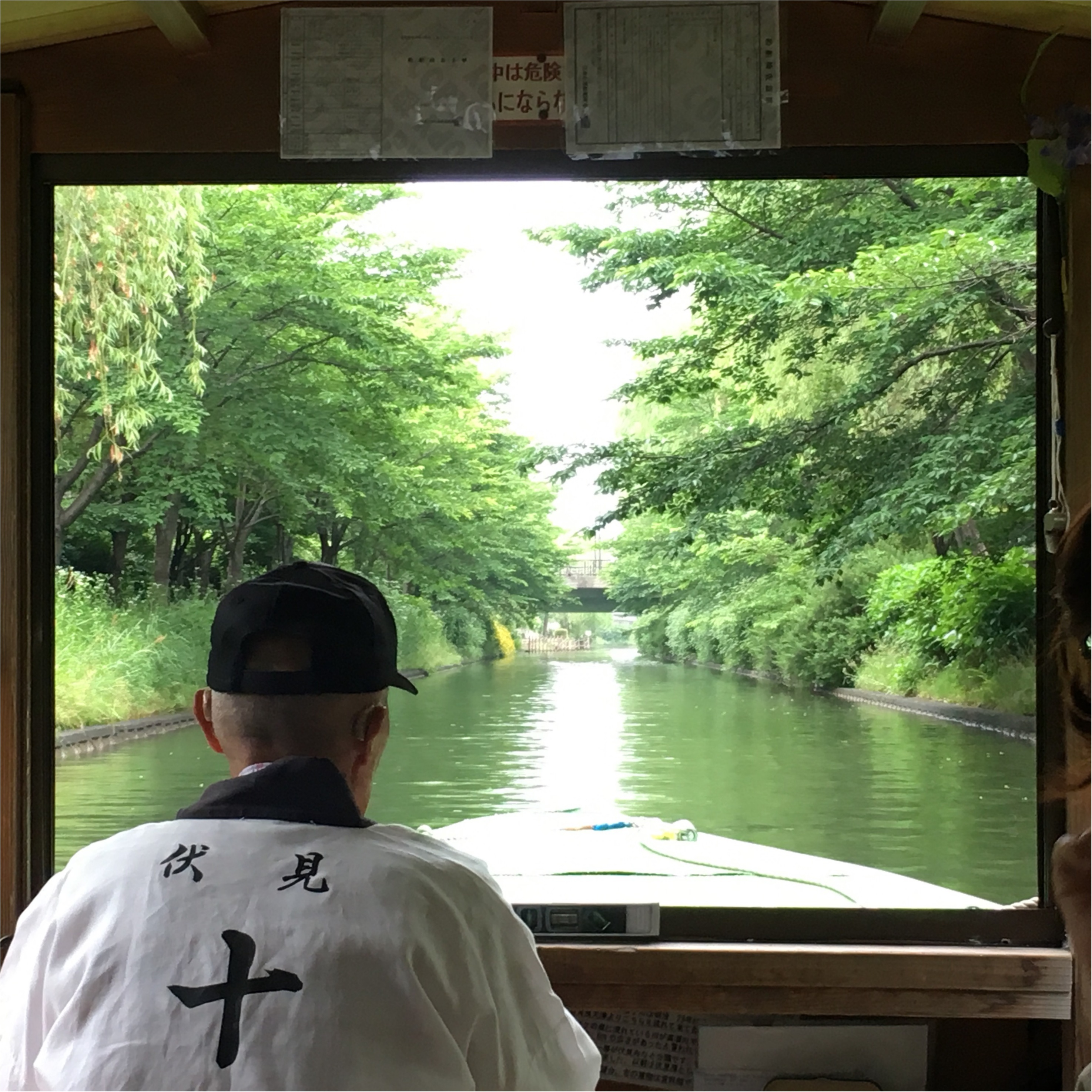 【京都TRIP✳︎】京都に来たなら絶対行くべし!伏見十石舟でゆらゆら♪まったりデート♡_3