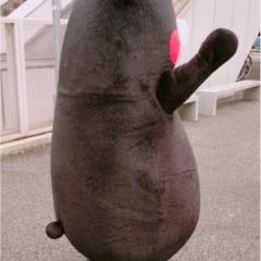 この後ろ姿は……まさかまさか!『くまモン』と遭遇しちゃいました!【#モアチャレ 熊本の魅力発信!】