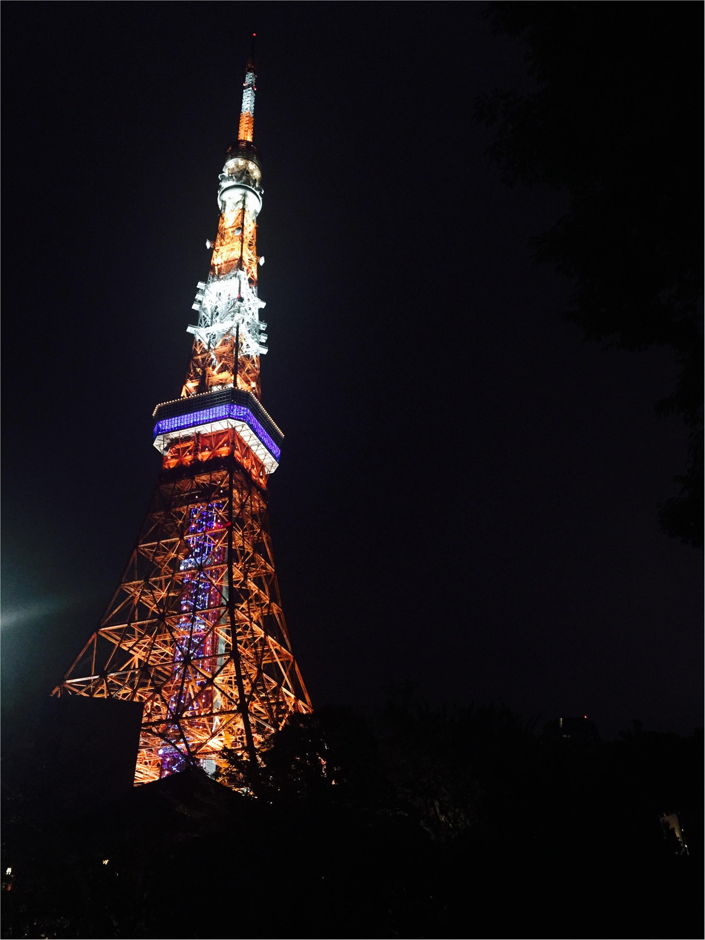天の川イルミネーション♡【東京タワー】_1