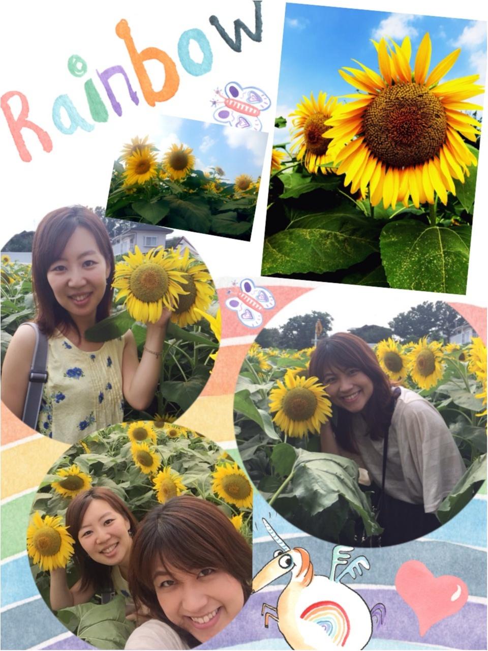 え!東京で?ステキなひまわり畑が!!!一面ひまわり\(//∇//)\_7