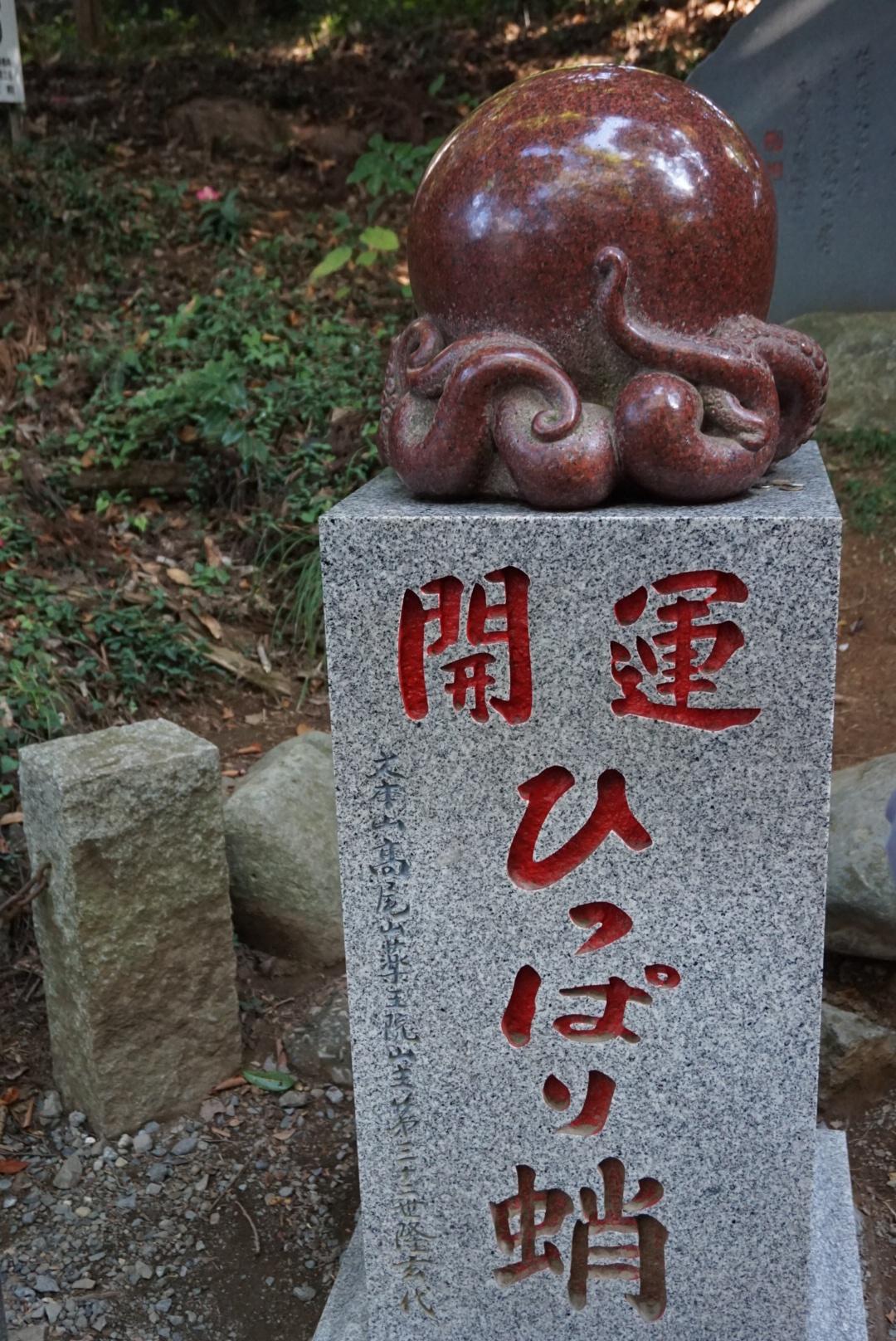 【おでかけ】いよいよ紅葉シーズン♡新宿から1時間以内の紅葉スポットって? _8