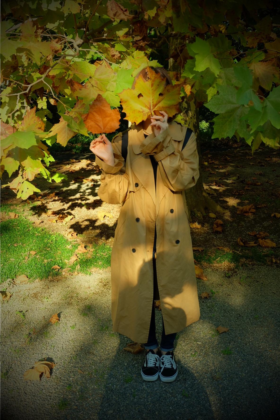 東京でも絶景の紅葉が!《新宿御苑》で秋が始められますよ〜!!フォトスポット&コーディネートも合わせてご紹介!_5