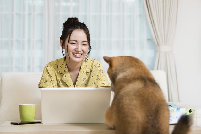在宅勤務で仕事中に犬と見つめ合っている様子