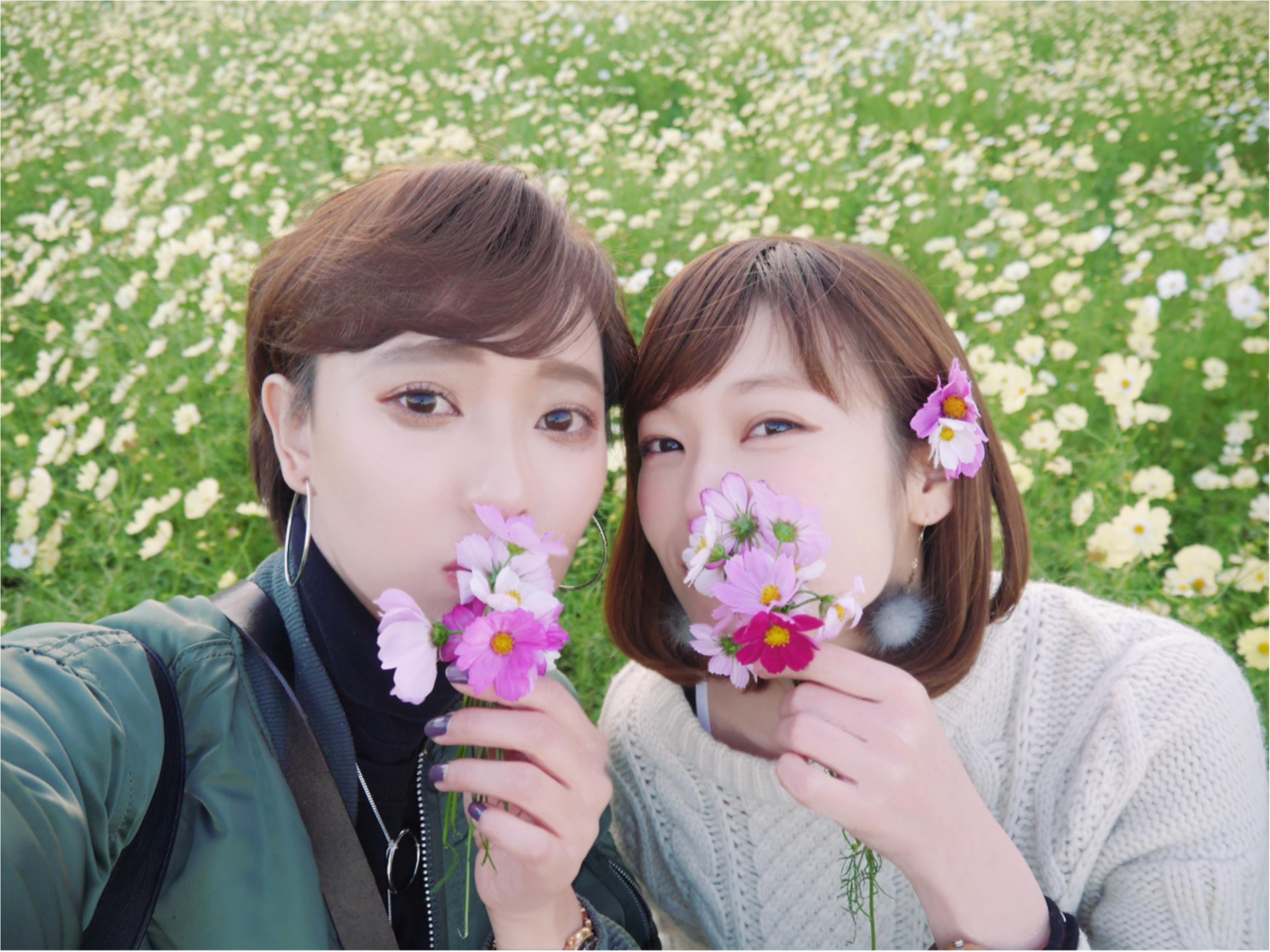 ★晴れた日は、カメラを持って昭和記念公園へ☺︎my camera は『LUMIX』!!_9