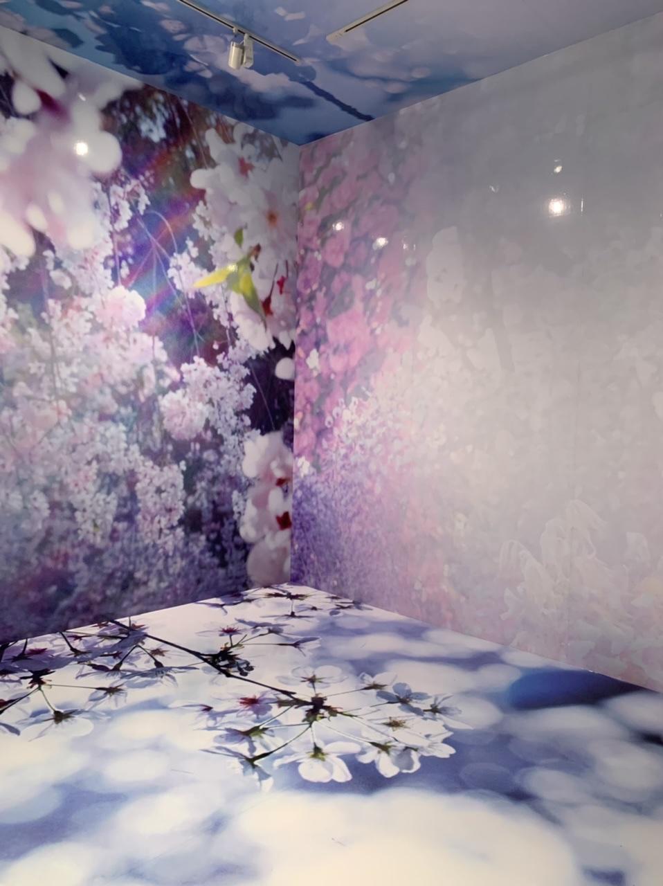 11/14(日)まで!上野の森美術館で開催中の蜷川実花展に行ってきました!_7