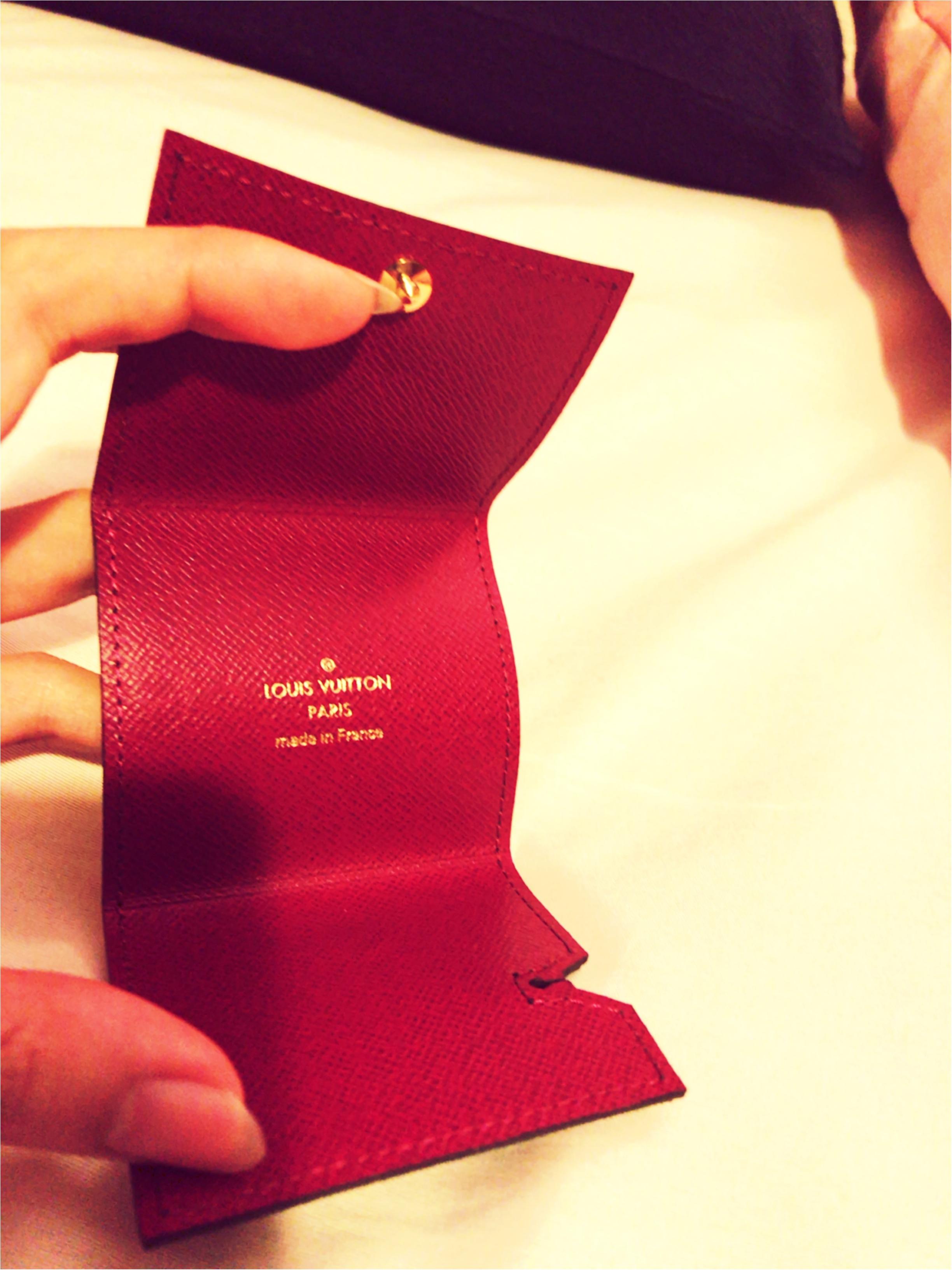2万円代で手に入るルイヴィトンpart1♡~持ってるだけで気分もあがる~_3