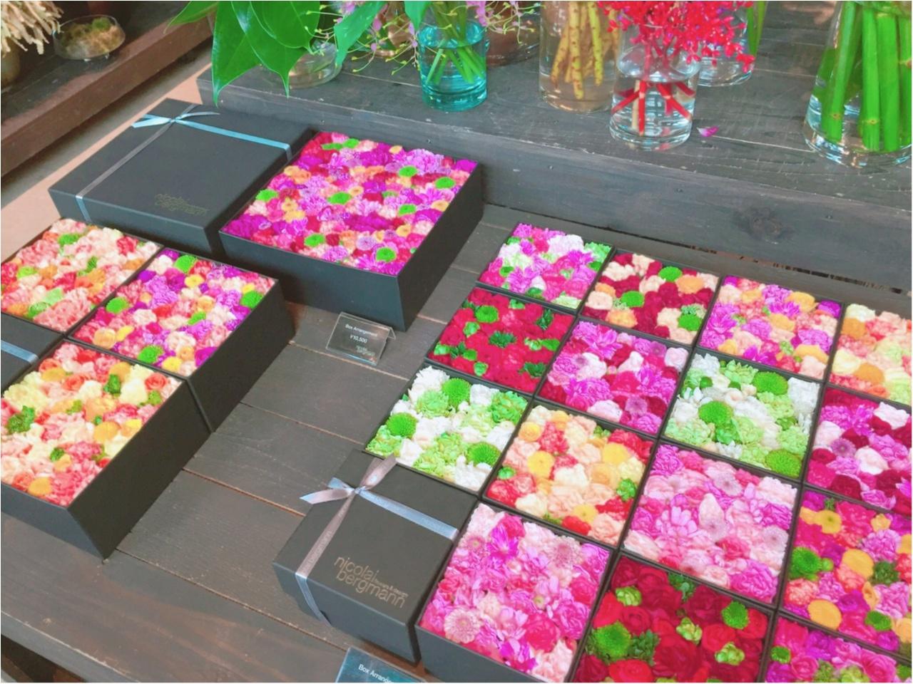 お花の空間に魅了!ニコライバーグマンのカフェがおしゃれすぎる!!_2