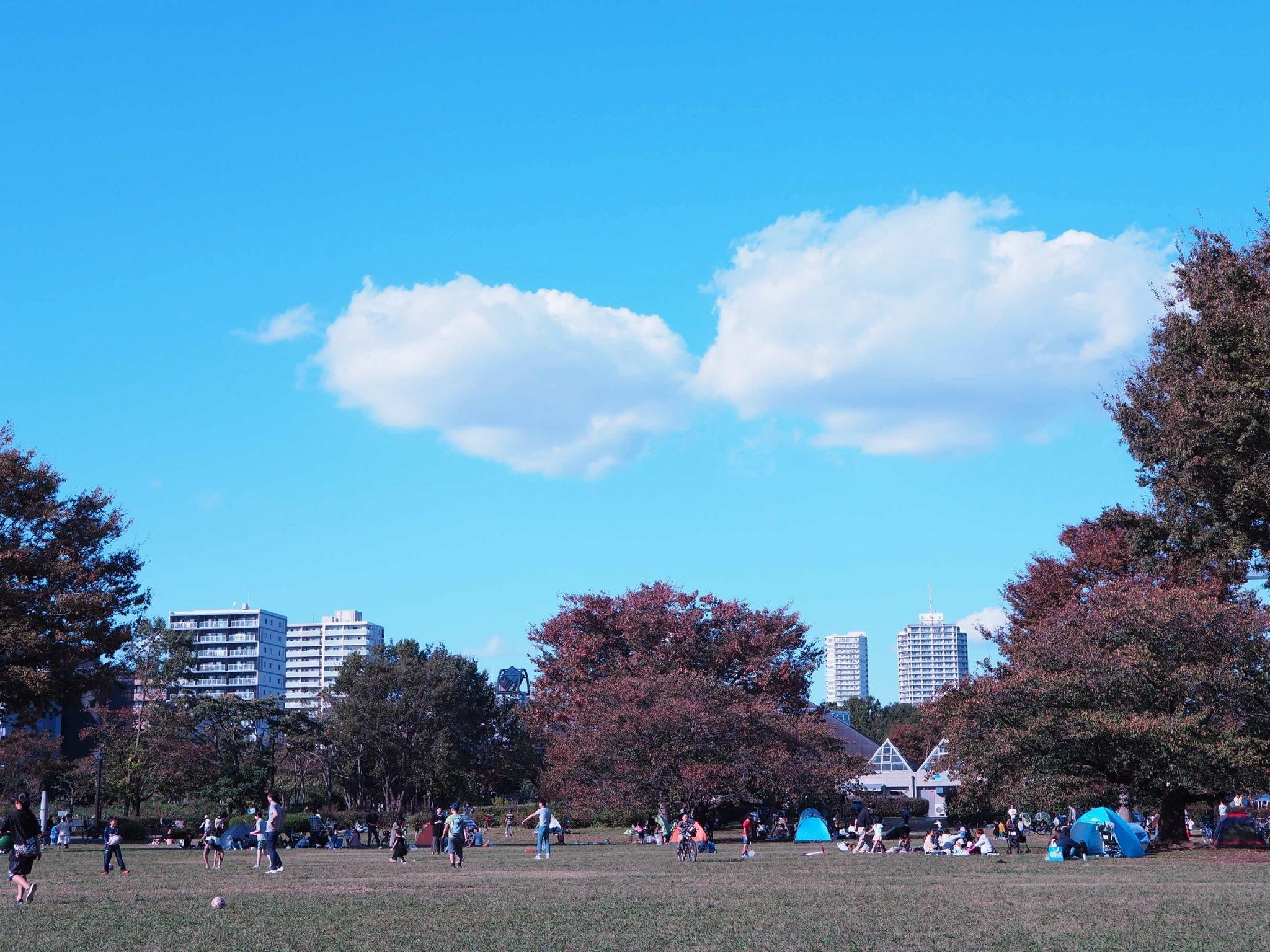 【都内サイクリング♩】秋晴れの日に #ドコモ・バイクシェア でお出かけしてみた♡_5
