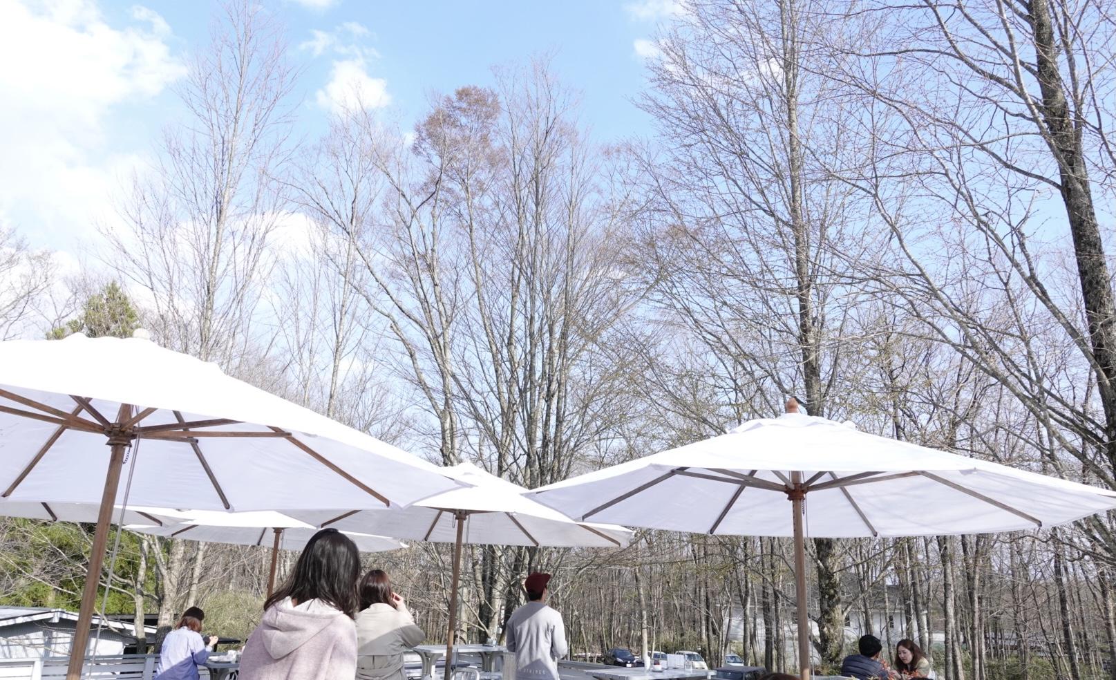 【栃木】那須にある愛犬も連れていける開放感のあるカフェ!「NASU SHOZO CAFE」コーヒーやスコーンが絶品★_2