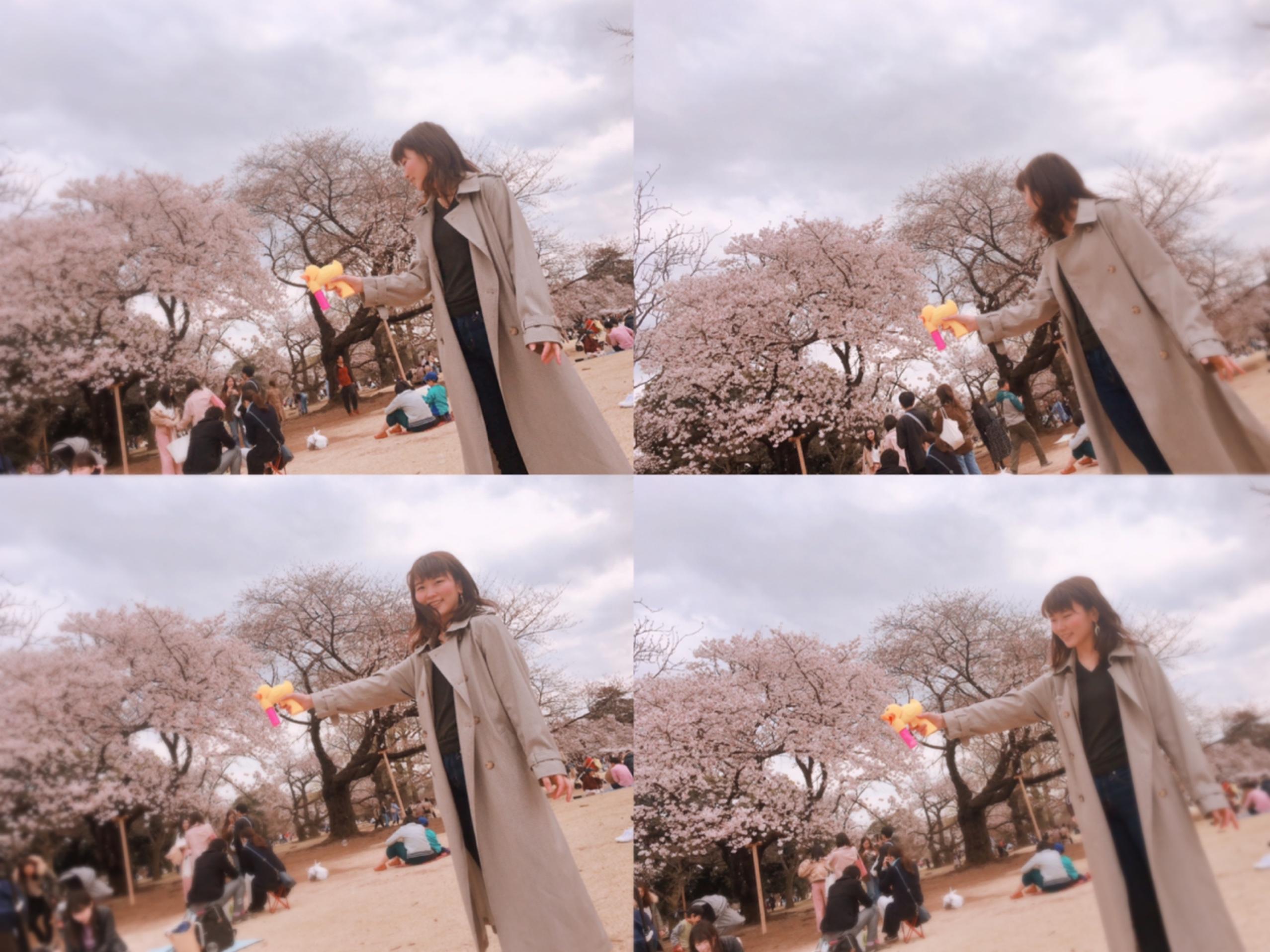 ▷桜の季節【お手軽お花見どこでする??】_3