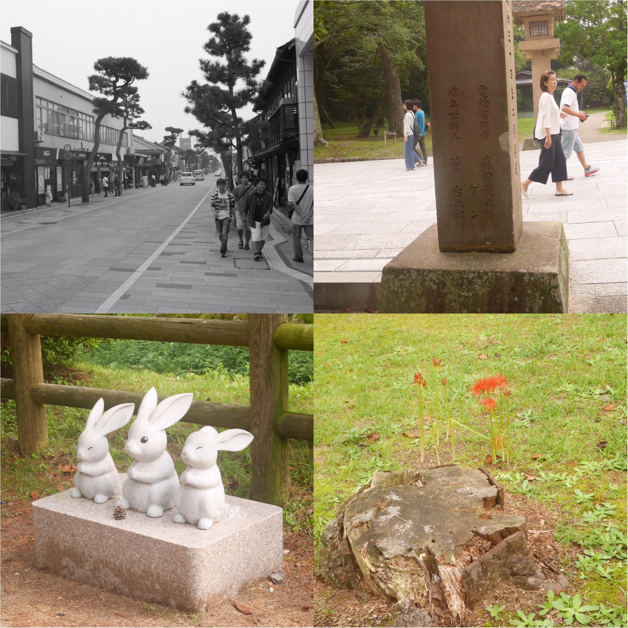 [島根・鳥取旅行①]縁結びぜんざい・出雲そばも! 出雲大社へ行って来ました!_3