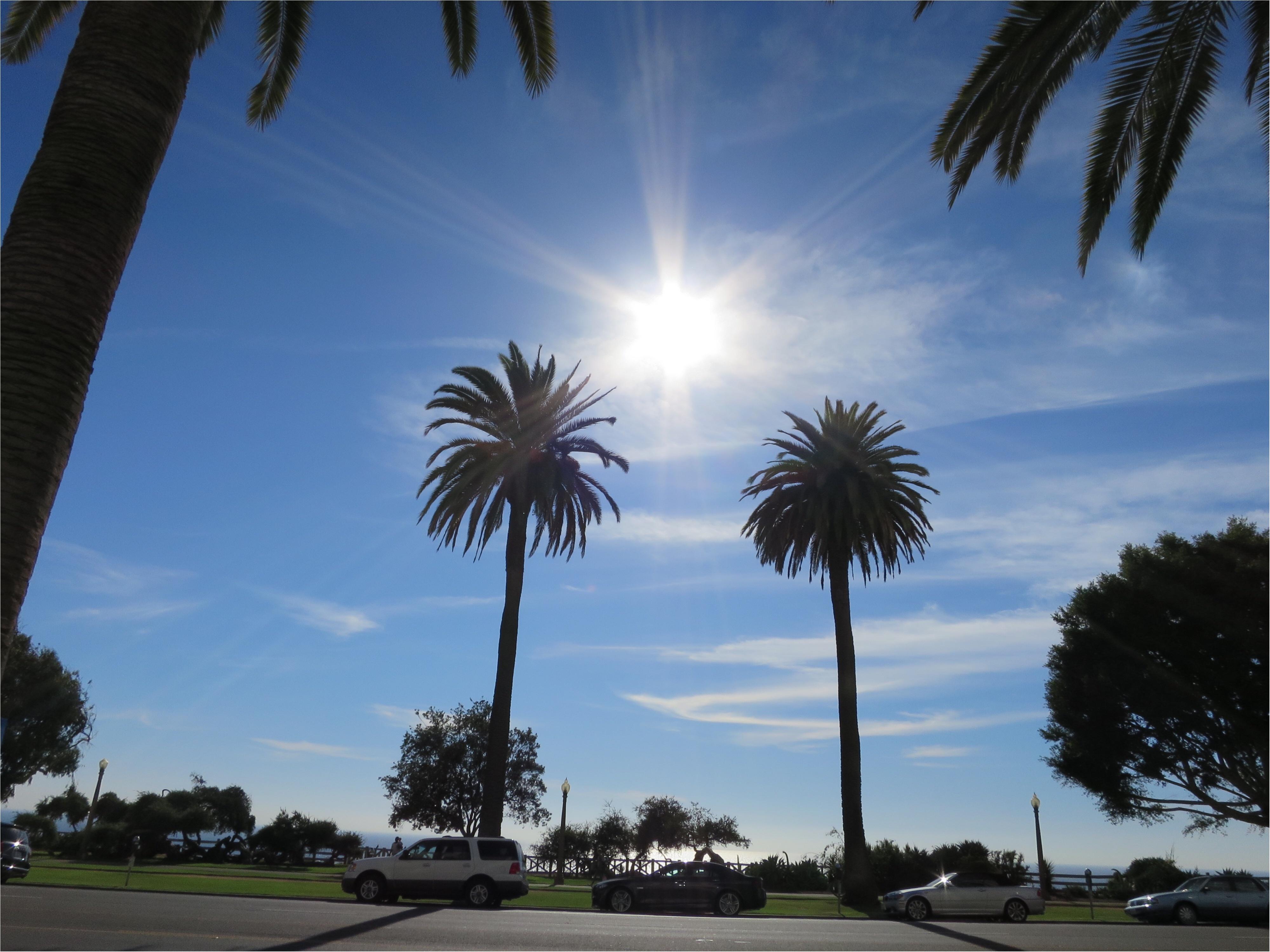 写真でも、きっと伝わるこの魅力✨朝から晩まで眺めた《*ロサンゼルスの広い空*》_1