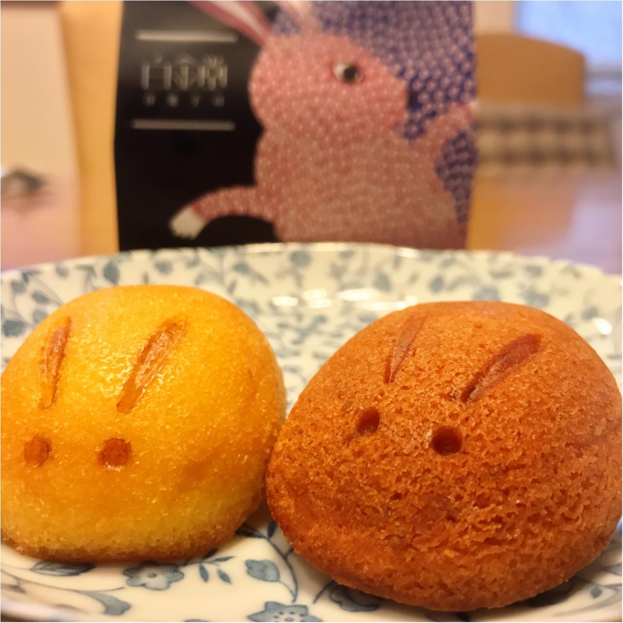 """可愛いだけじゃない♡【白金堂】の""""兎ケーキ""""_2"""