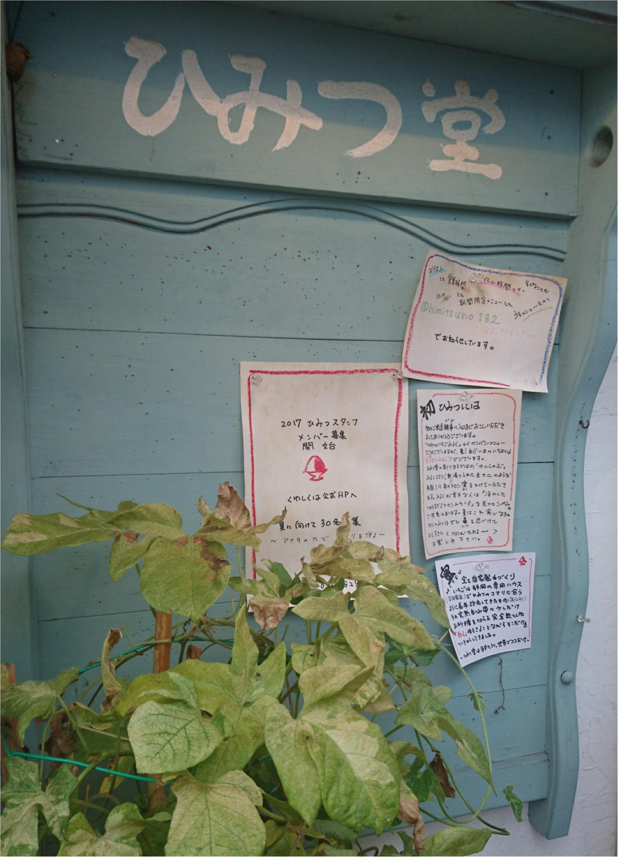 今大人気のひみつ堂のかき氷(〃ω〃)_1