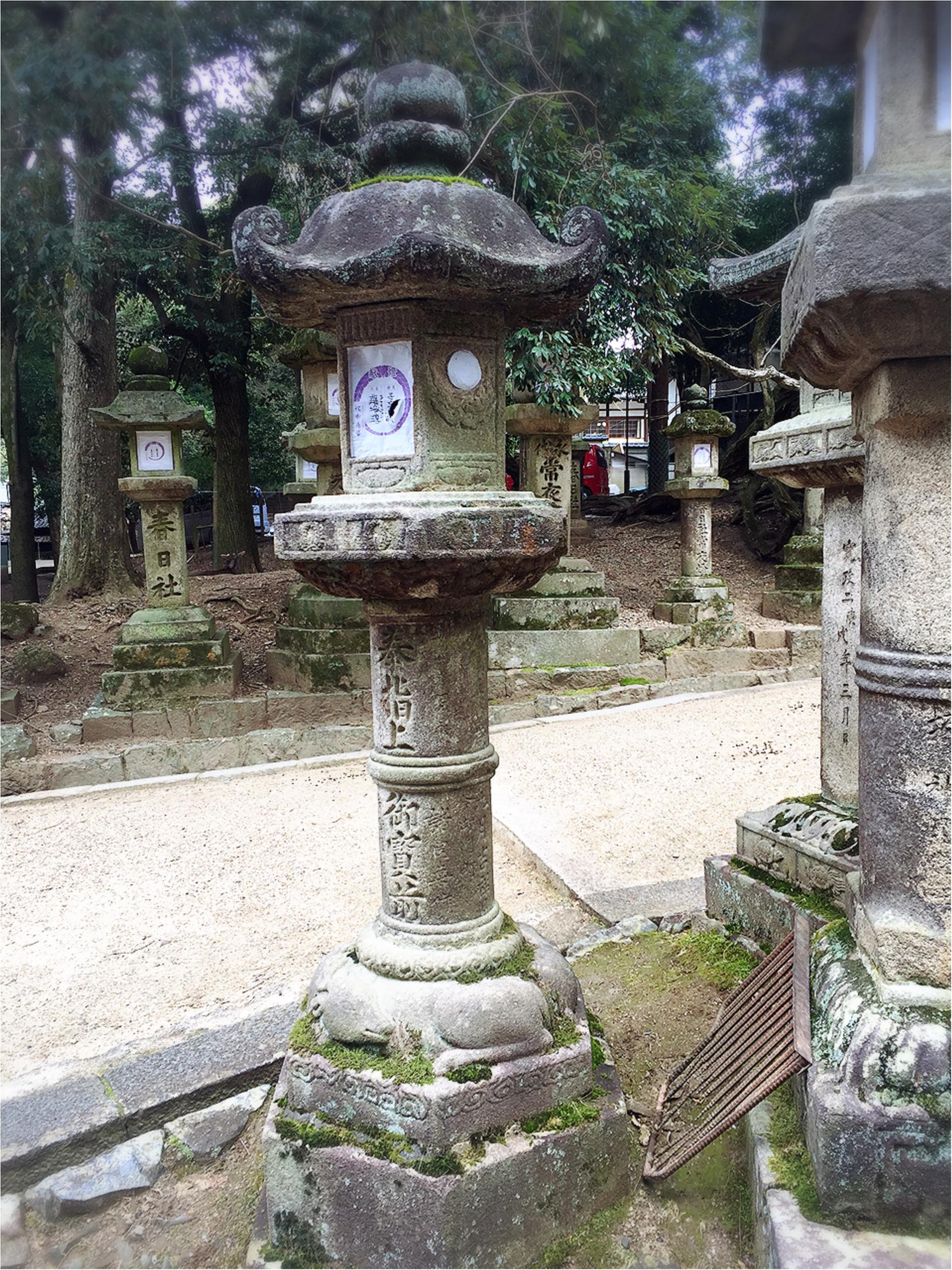 京都&奈良、1泊2日の新発見ツアー_4