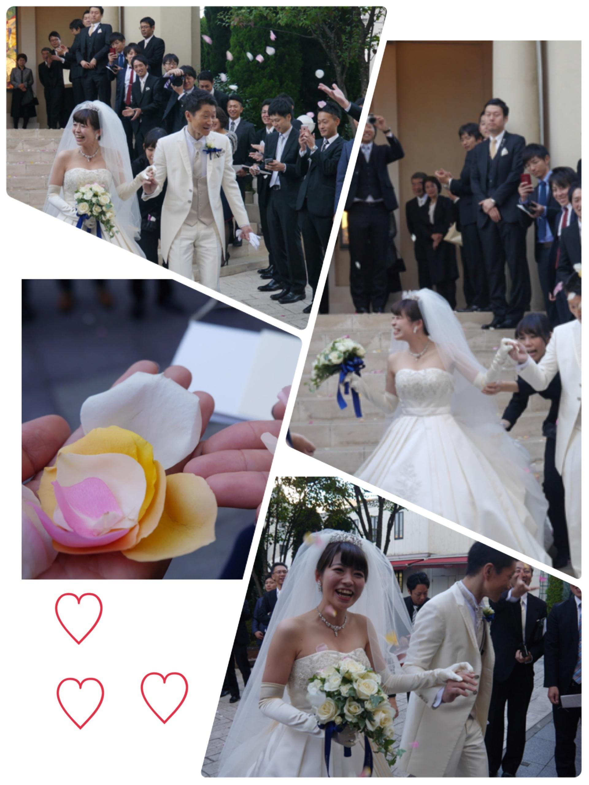 ★幸せのお裾分け『こんな可愛い花嫁さん他にいますか?!』_3