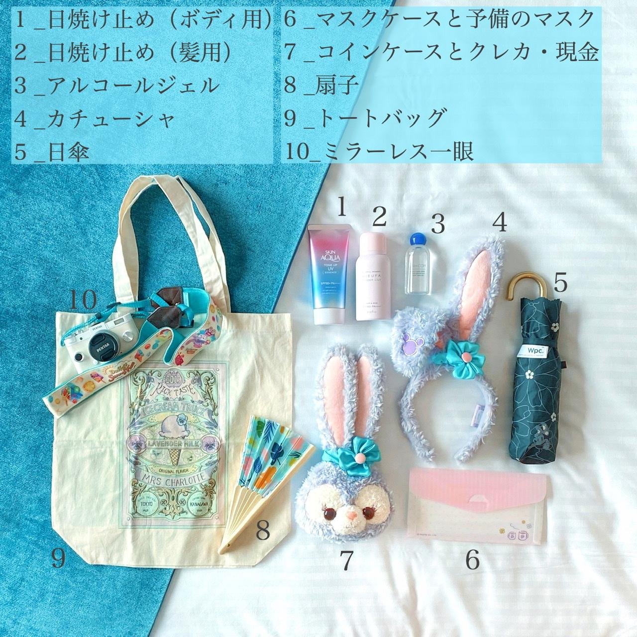 【ディズニー】暑い夏の日のバッグの中身♡_2