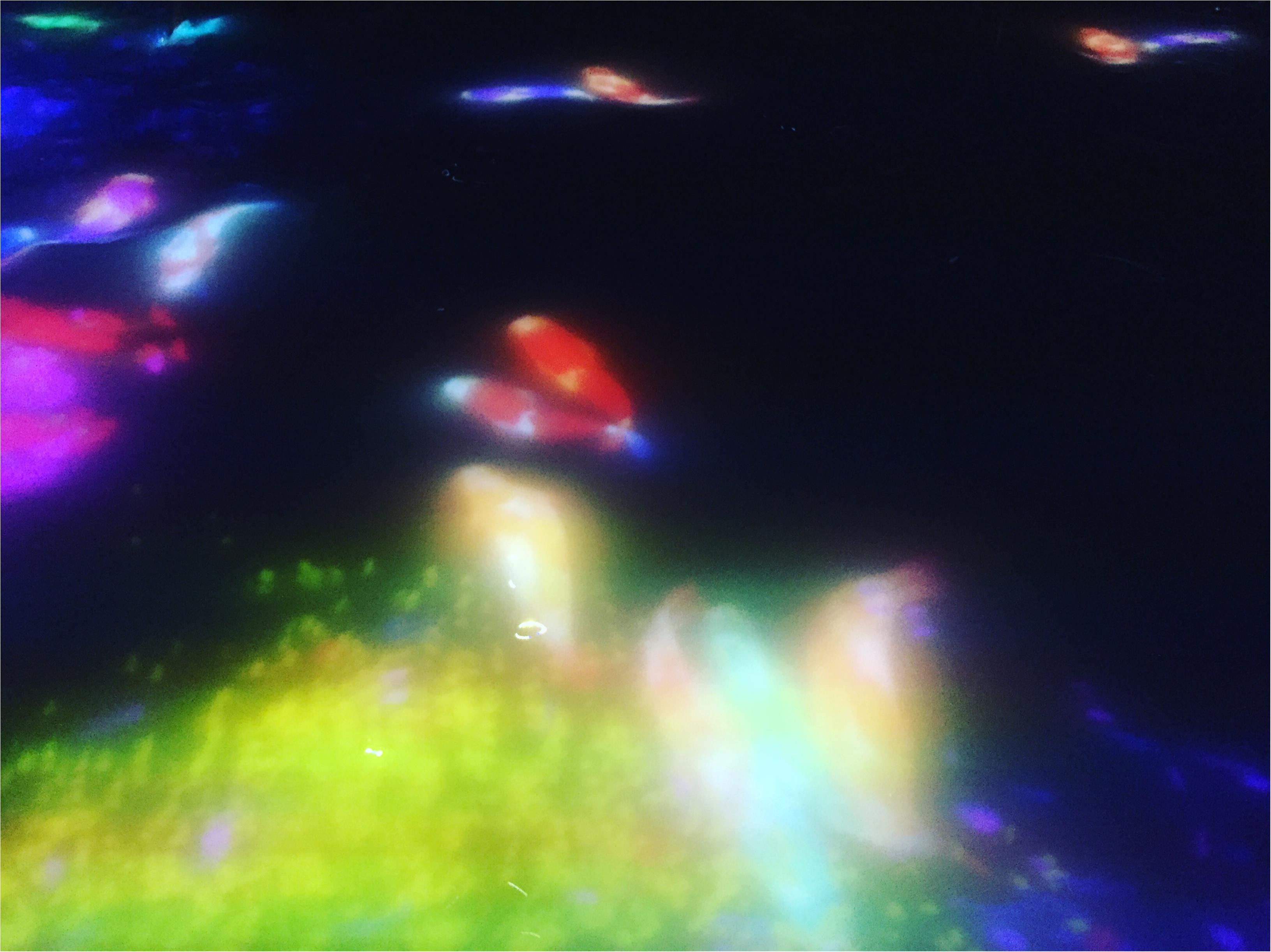 【夏のお出掛けスポット/DMM.プラネッツ Art by teamLab】水に浸かったり仰向けになったりして鑑賞する『デジタルアート』が幻想的✨8/31まで!お台場に急げ♩≪samenyan≫_14