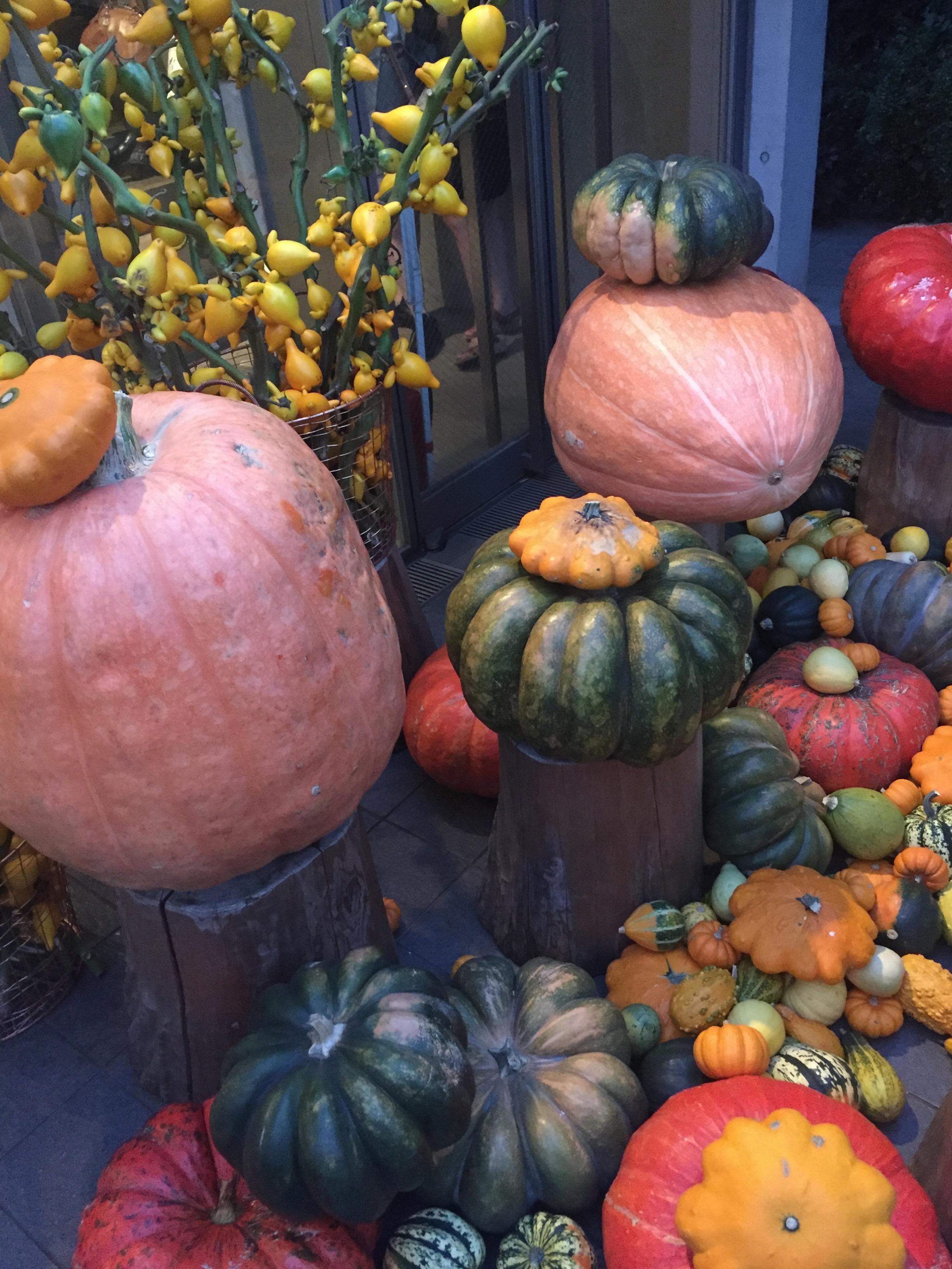 【表参道/CAFE】一足早い秋を感じたいならココ❤︎ニコライバーグマンカフェの秋仕様がとっても可愛いんです!_1