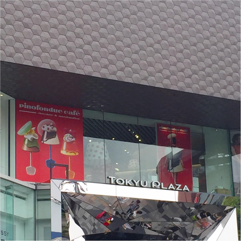 アイスの『pino』がつくった【ピノフォンデュカフェ】今年も東急プラザ表参道原宿3Fにオープン!大阪も今週末オープン✨≪samenyan≫_5