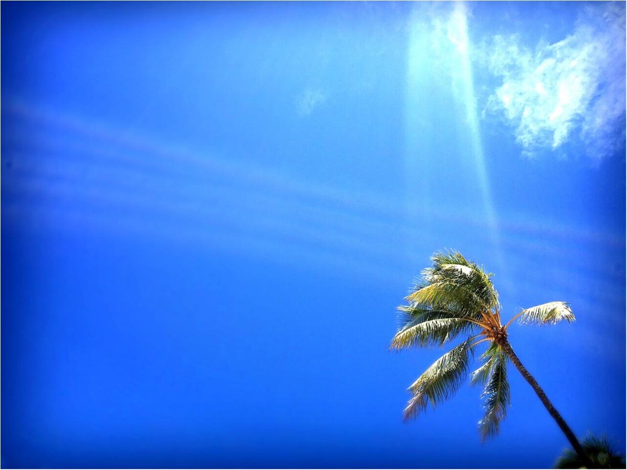 お休みの平日はビーチスタイルでお出かけしたい。byじゅな_1