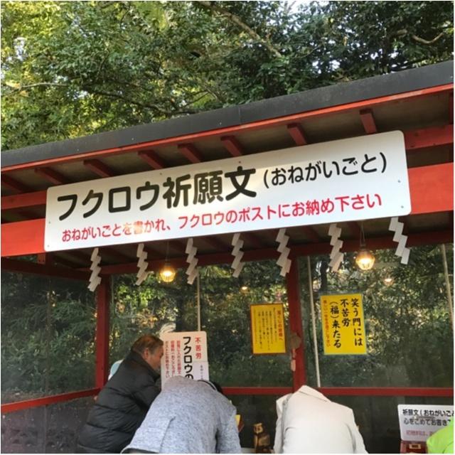 【パワースポット】栃木県の鷲子山神社へ運気アップに行ってきました♪《メディアで話題のフクロウ神社》_3_1
