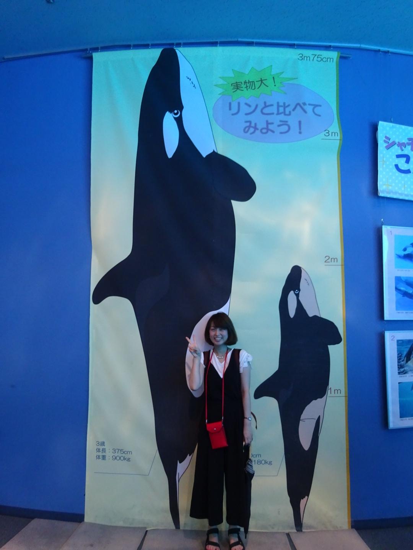 おさよ:夏休みは、名古屋港水族館がオススメ!♡_3