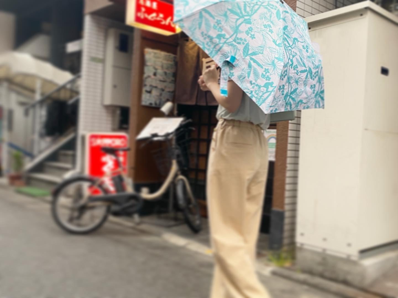 雨の日もテンションあがる折りたたみ傘_1