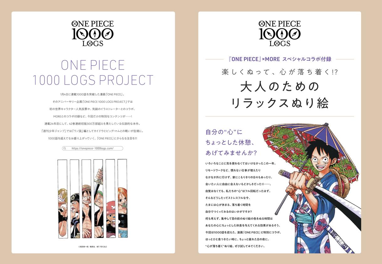 とじ込み付録 『ONE PIECE』×MORE スペシャルコラボ付録(1)