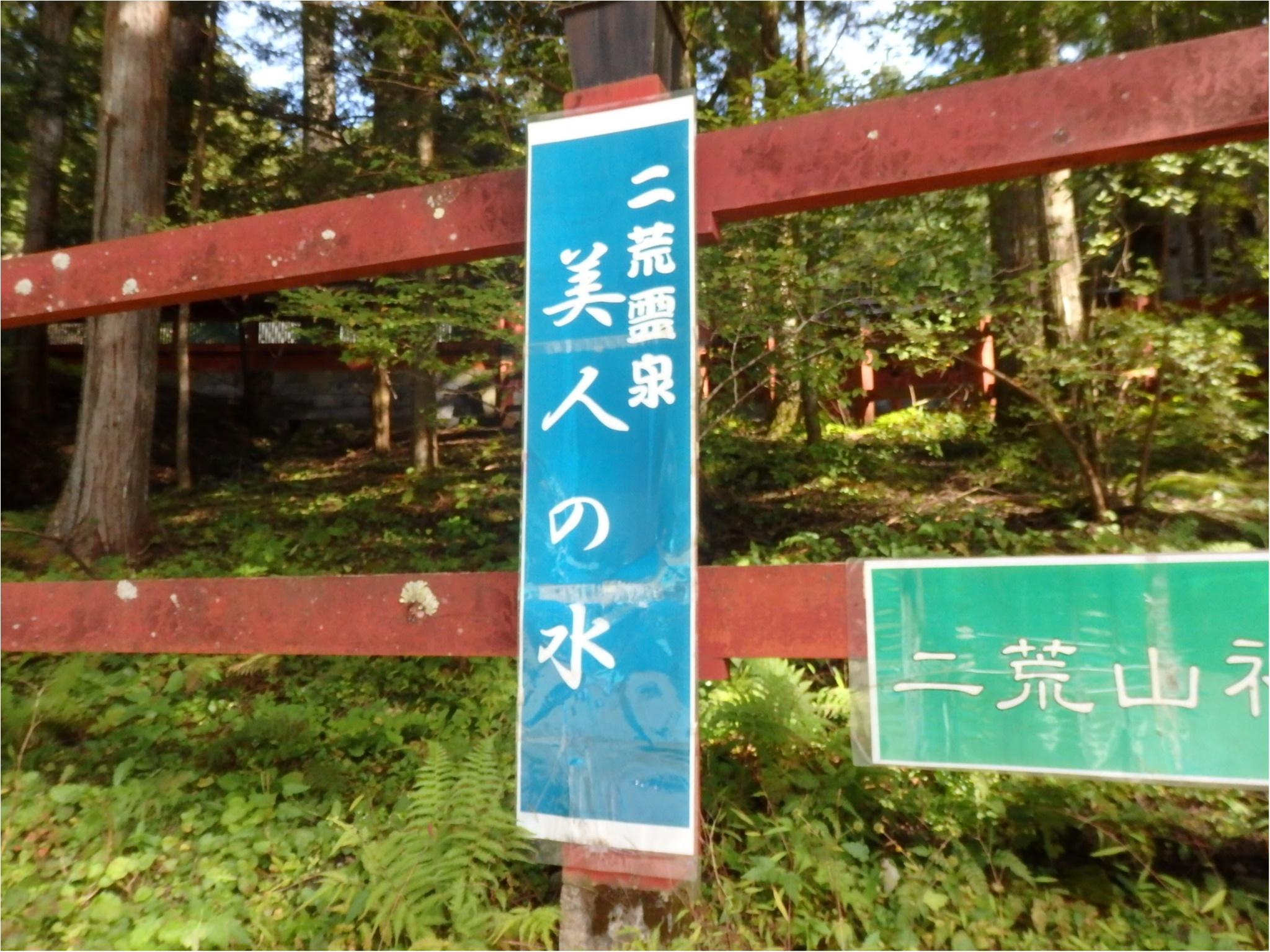 【知らなかった!】日本一楽しめる神社へ潜入してみた_20