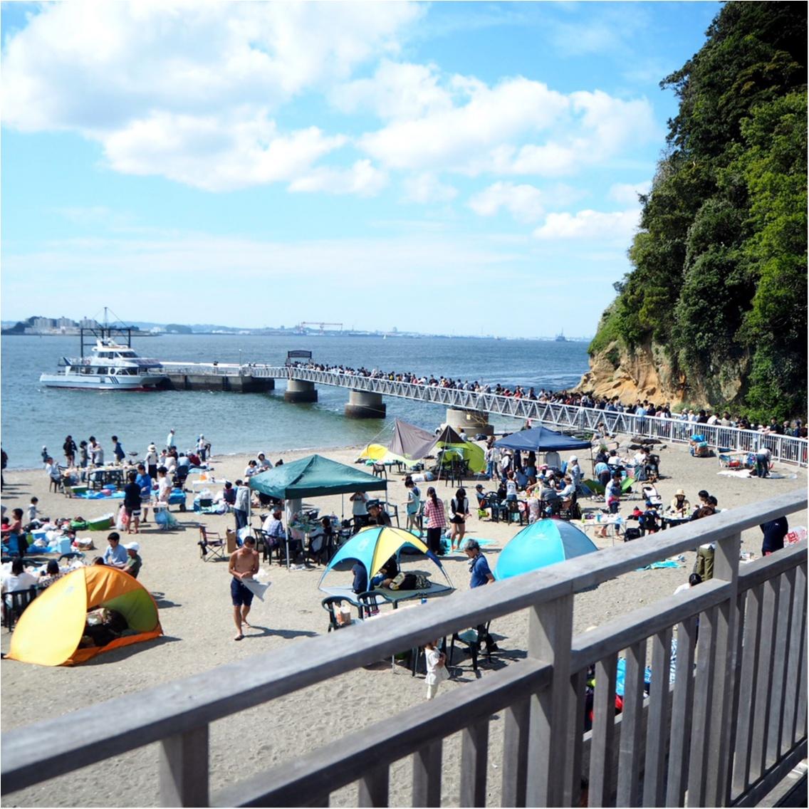 東京湾に唯一ある無人島「〇〇」に行ってきました♪_4