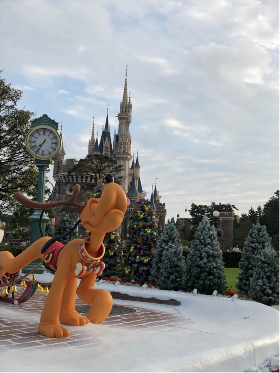 TDL35周年!【ディズニー・クリスマス】行ってきました♡_7