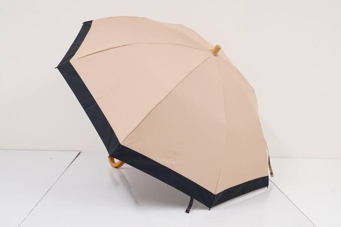 【サンバリア100】田中みな実さん愛用の日傘を購入♡_1