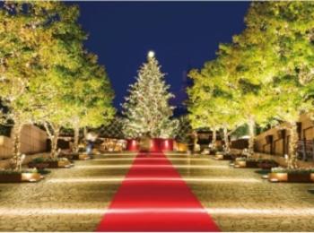【2018年版】クリスマスにお出かけしたいスポット総まとめ | 東京