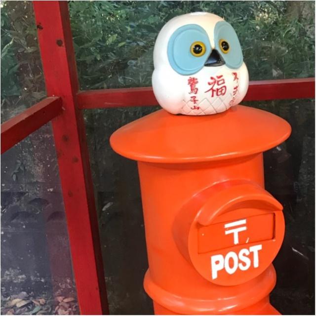 【パワースポット】栃木県の鷲子山神社へ運気アップに行ってきました♪《メディアで話題のフクロウ神社》_3_2