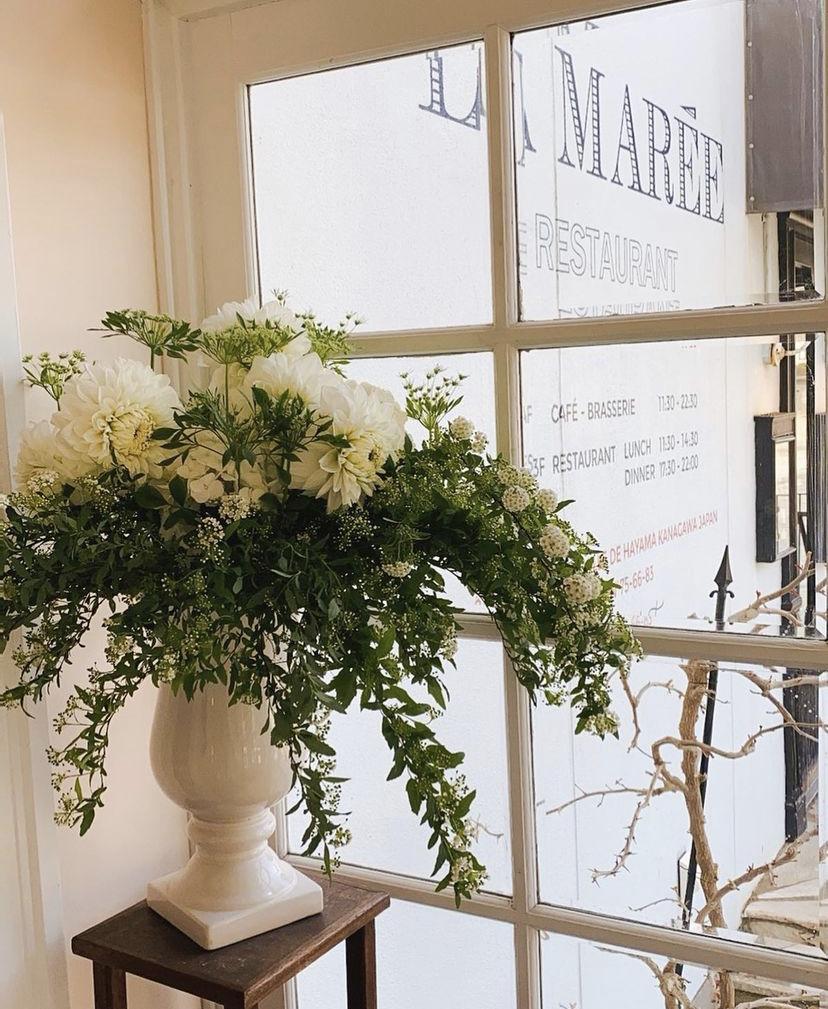 白い花 ラマーレ フレンチ レストラン