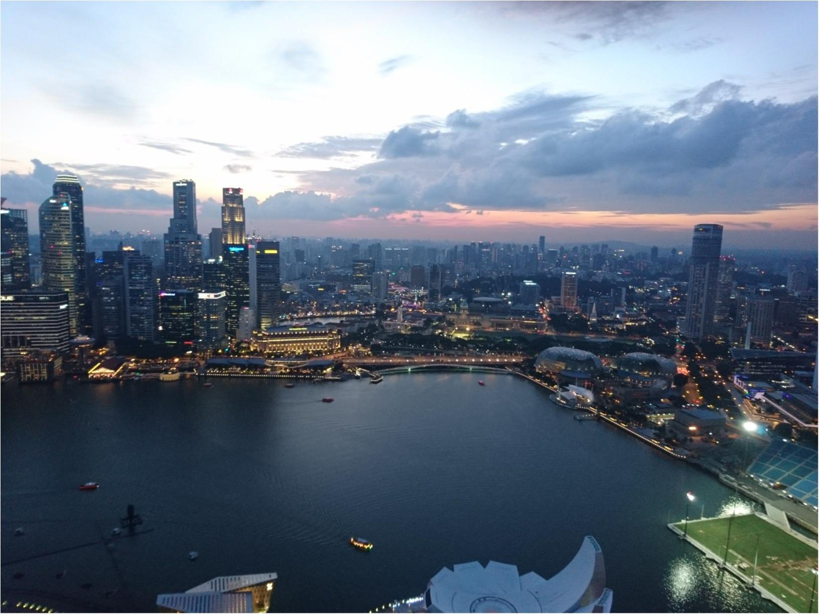 シンガポール女子旅特集 - 人気のマリーナベイ・サンズなどインスタ映えスポット、おいしいグルメがいっぱい♪_52