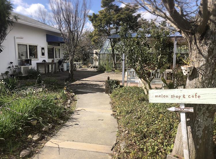 【#静岡】メロン農園直営❁緑に包まれたガーデンのようなカフェが魅力!甘〜いメロンをいただきました♩_2