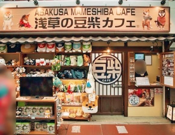 わんこ好きにおすすめ♡浅草の豆柴カフェに行ってきました_1
