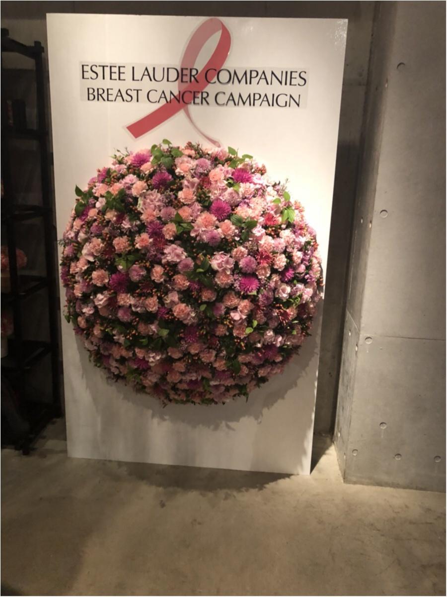 【乳がんのない世界へ】乳がんキャンペーン に参加してきました!!_6