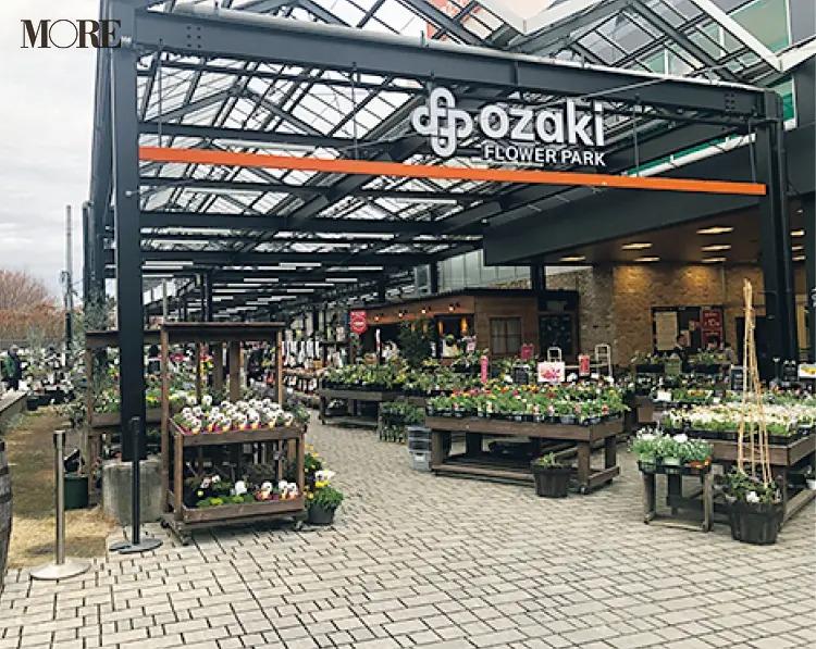おすすめ植物店のオザキフラワーパーク