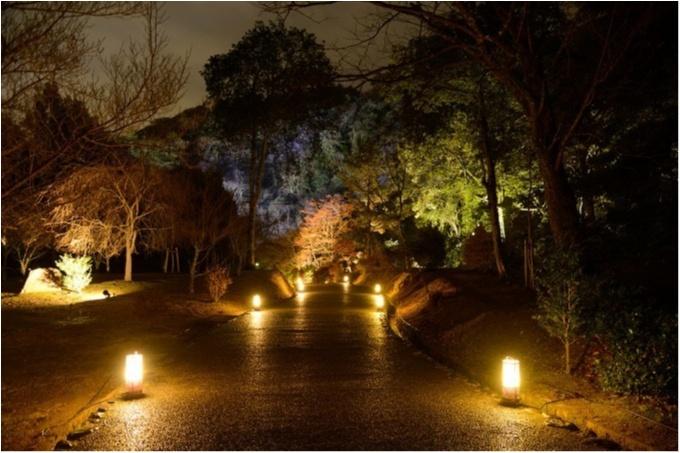 大阪城ナイトウォーク「サクヤルミナ」、「京都・嵐山花灯路-2018」 記事Photo Gallery_1_3