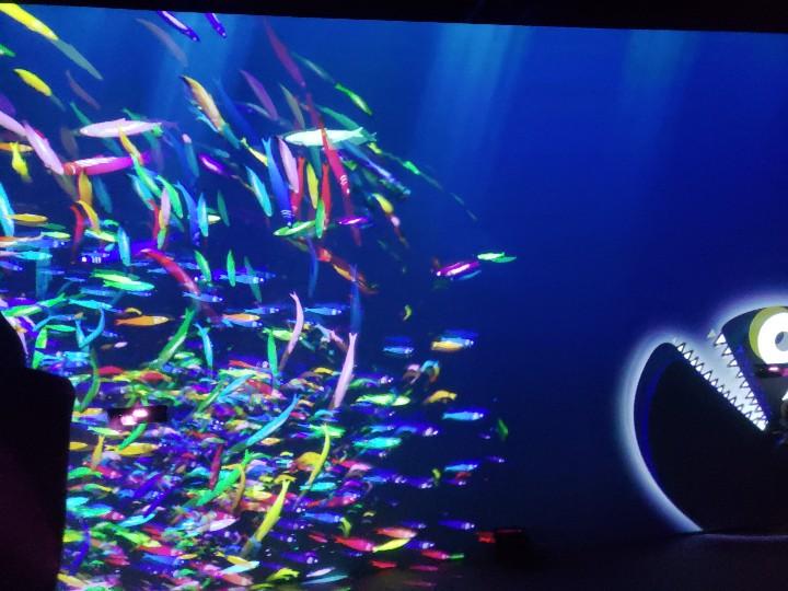 「OCEAN BY NAKED 光の深海展」デジタルアートで手軽に癒しと映え♡_3